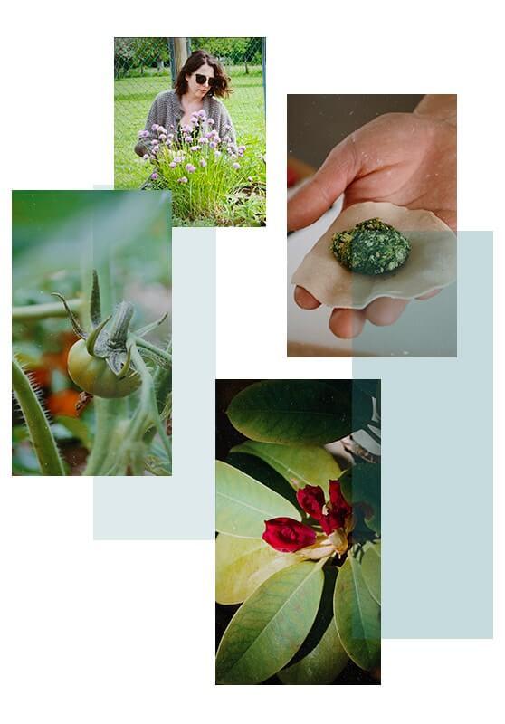Consultations naturopathie